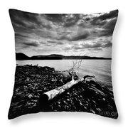 Along The Riverbank Of Beacon Throw Pillow