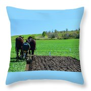 Along The Row Four  Throw Pillow