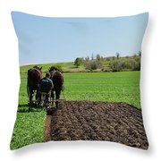 Along The Row  Throw Pillow