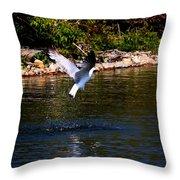 Along The Shoreline Throw Pillow