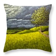 Along The Stone Wall Throw Pillow