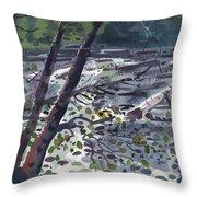 Along The White River Throw Pillow