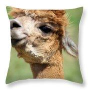 Alpaca 1 Throw Pillow