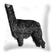Alpaca Fine Art Throw Pillow