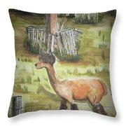 Alpaca Glory Throw Pillow