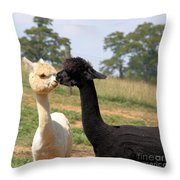 Alpaca Kiss Throw Pillow