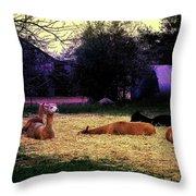 Alpacan Twilight Throw Pillow