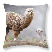 Alpacas Mum And Baby Throw Pillow