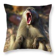 Alpha Baboon Yawning, Kruger Park Throw Pillow
