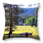 Alpine Arizona Throw Pillow