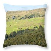 Alpine Forest Landscape.  Throw Pillow