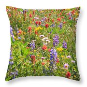 Alpine Glory In Canada Throw Pillow