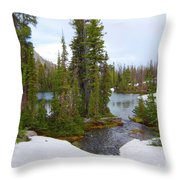 Alpine Lake Area Throw Pillow
