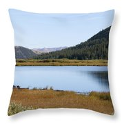 Alpine Lake In The Arapahoe National Forest Throw Pillow