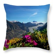 Alpine Meadow Flowers Overlooking Glacier Throw Pillow