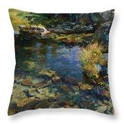 Alpine Pool Throw Pillow