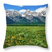 Alpine Spring Throw Pillow