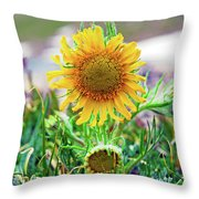 Alpine Sunflower In Summer Throw Pillow