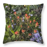Alpine Wildflowers Hurricane Ridge 4031 Throw Pillow