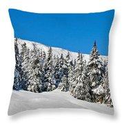 Alpine Winter Throw Pillow