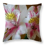 Alstroemerias - Heralding Throw Pillow