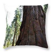 Alta Vista Giant Sequoia Throw Pillow