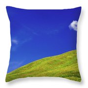 Altai Throw Pillow