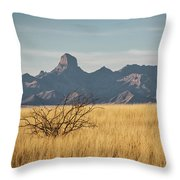 Altar Valley  Throw Pillow