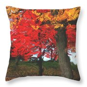 Altered State In The Park Throw Pillow