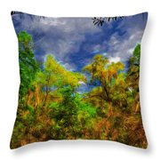 Altered State Throw Pillow