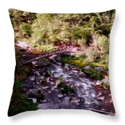 Altered States At The Park Throw Pillow