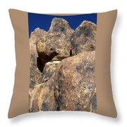 Alternate Composition Throw Pillow