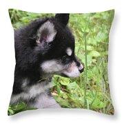 Alusky Puppy Tip Toeing Through Green Foliage Throw Pillow