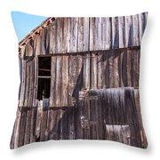 Alva's Barn Throw Pillow