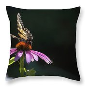 Always June Throw Pillow