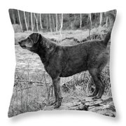 Always Ready For Fun Throw Pillow