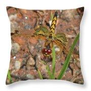 Amanda's Pennant Dragonfly Female Throw Pillow