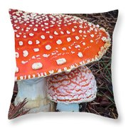 Amanita Muscaria - Red Mushroom Throw Pillow