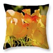 Amarillo 003 Throw Pillow