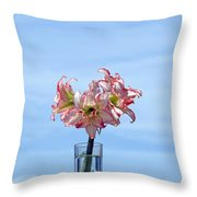 Amaryillis Belladonna Against The Spring Florida Sky Throw Pillow