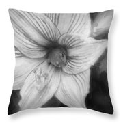 Amaryllis And Tree Frog Painted Bw Throw Pillow