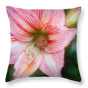 Amaryllis And Tree Frog Painted  Throw Pillow