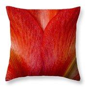 Amaryllis Flower Petals Throw Pillow