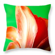 Amaryllis Head Pt Orange Amaryllis Flower On Green Background Throw Pillow
