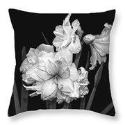 Amaryllis In Black And White Throw Pillow