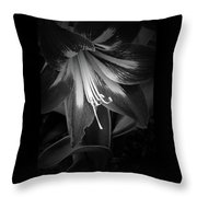 Amaryllis In Bw Throw Pillow