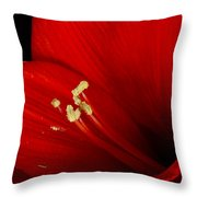 Amaryllis  Pollen Throw Pillow