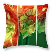 Amaryllis Triptych Throw Pillow