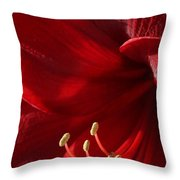 Amaryllis6790 Throw Pillow