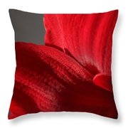 Amaryllisleaves6698 Throw Pillow